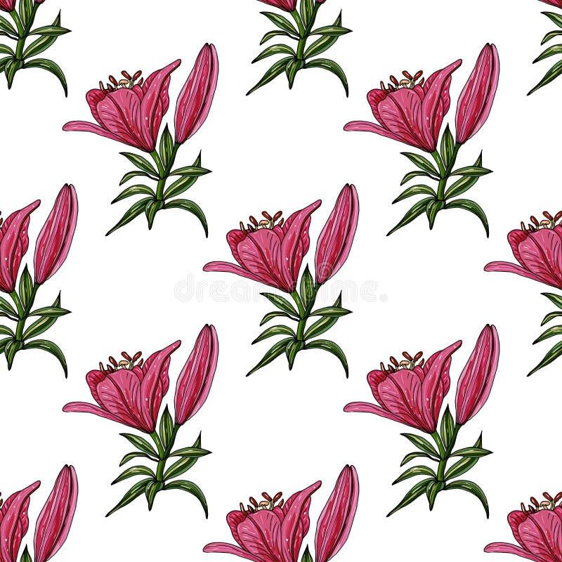 与不同的百合五颜六色的花束的无缝的样式  向量例证