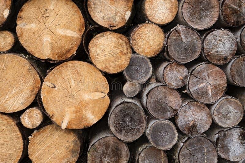与不同的年龄树干的柴堆  免版税库存照片