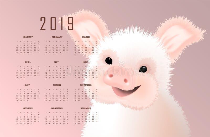 与东部标志的日历的2019猪 在桃红色背景的愉快的微笑的逗人喜爱的小贪心传染媒介illustartion 向量例证