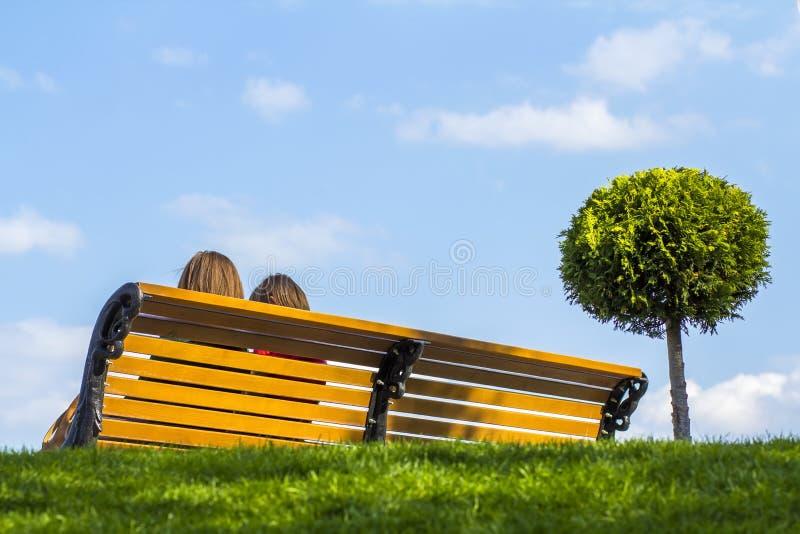 与两个女孩的长木凳在绿草和小树附近 免版税库存图片