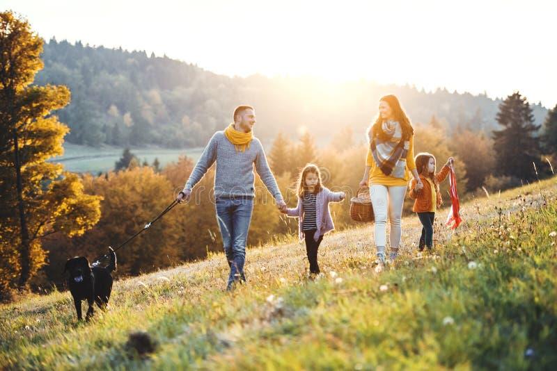 与两个小孩子和一条狗的一个年轻家庭在一个草甸的步行日落的 免版税图库摄影