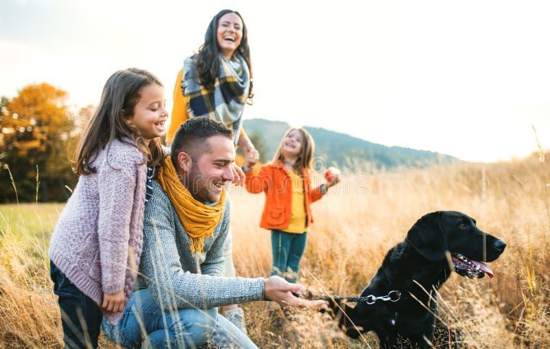 与两个小孩子和一条狗的一个年轻家庭在秋天自然的步行 库存照片