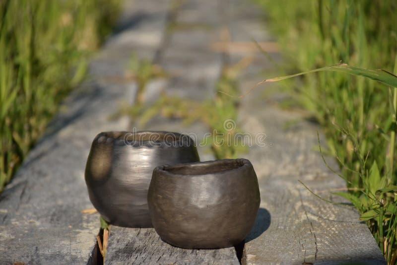 与两个独特的手工制造黑瓦器罐特写镜头的夏天心情在早晨阳光下 免版税图库摄影