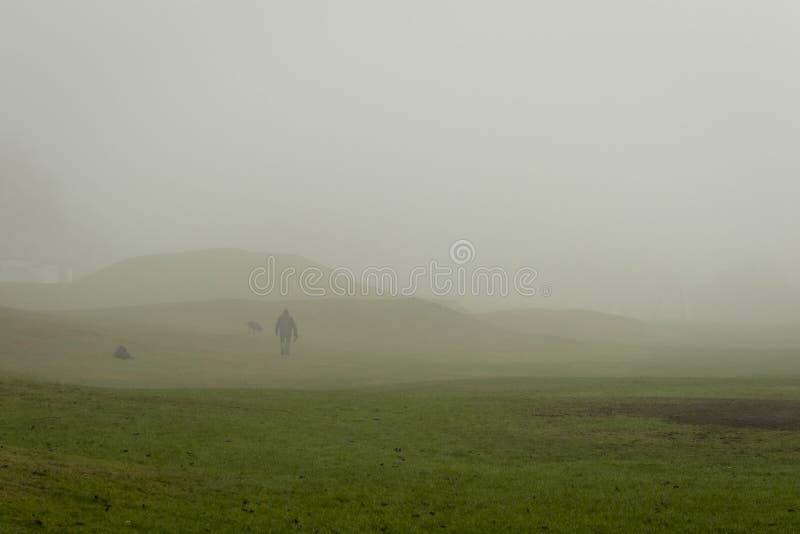 与两条狗的Dogwalker在雾的一个公园 免版税图库摄影