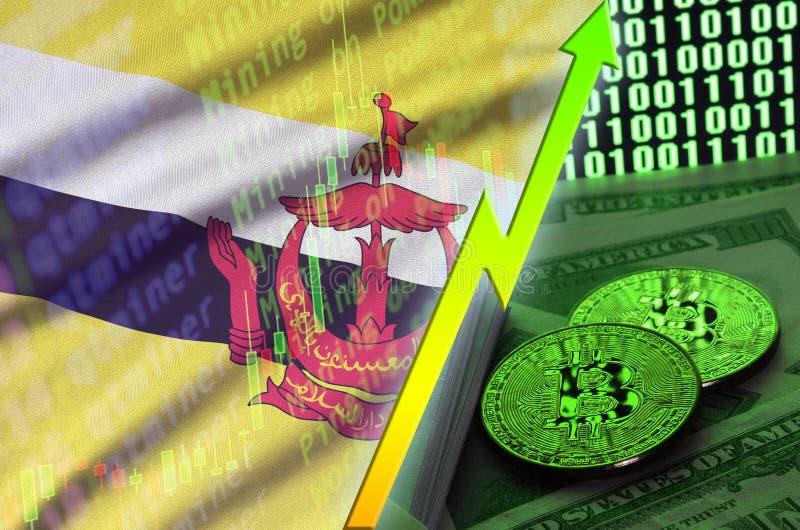 与两bitcoins的文莱达鲁萨兰旗子和cryptocurrency增长的趋向在美金和二进制编码显示 库存例证