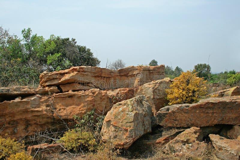 与中间灌木的坚固性岩石堆 免版税库存图片