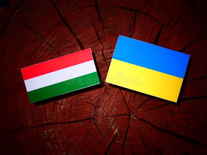 与乌克兰旗子的匈牙利旗子在被隔绝的树桩 库存照片