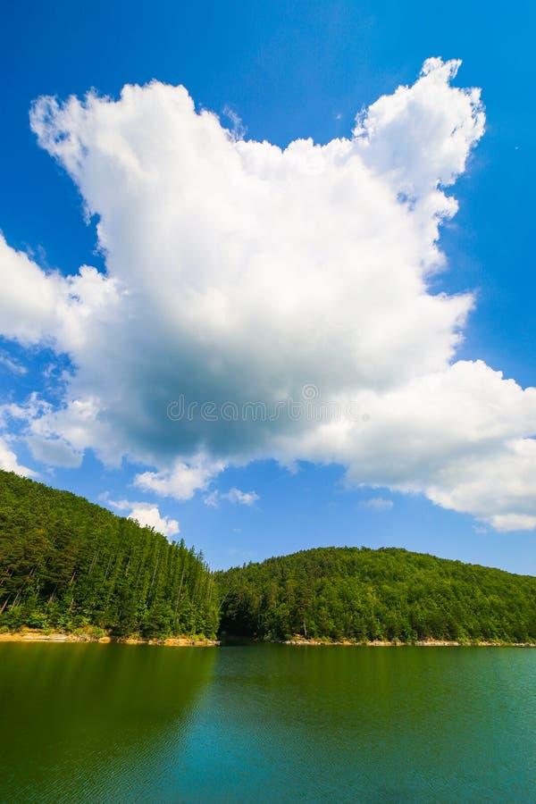 与乌龟的山风景塑造了森林在湖Gozna的云彩围拢的在Valiug 库存图片