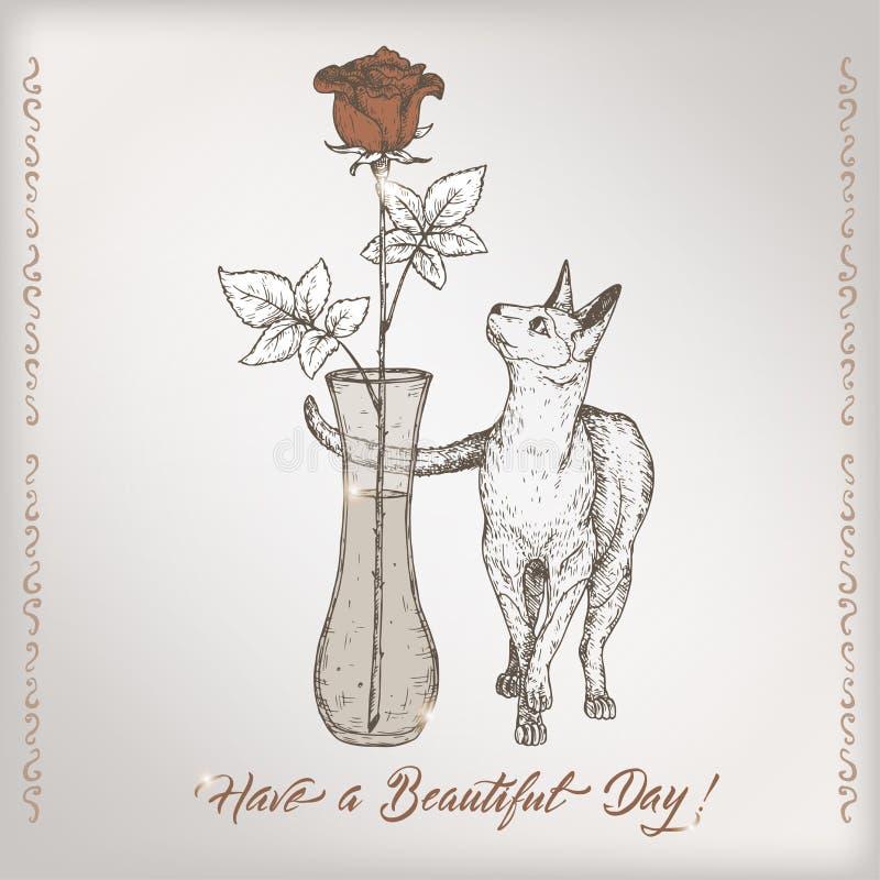 与书法的浪漫葡萄酒生日贺卡模板,猫和在花瓶剪影上升了 向量例证