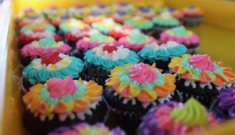 与乳脂状的花装饰的巧克力杯形蛋糕 库存照片