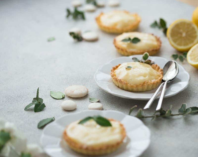 与乳蛋糕柠檬奶油和柠檬的微型馅饼 库存图片
