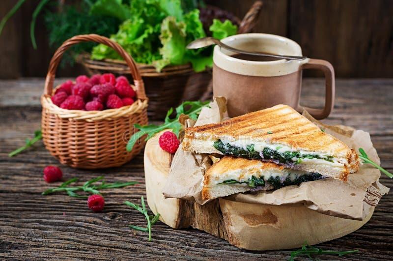 与乳酪和芥末叶子的Panini三明治 穿戴女孩褂子早晨白色的咖啡杯 图库摄影