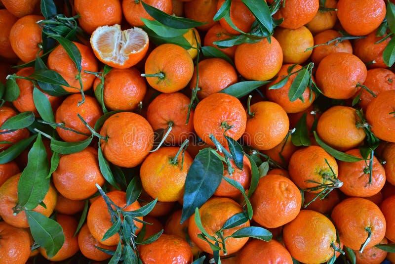 与二分之一的橘子部分地被剥皮的 免版税库存图片