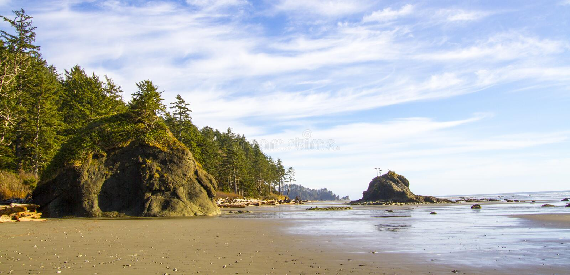 海岸线处于低潮中第二个海滩奥林匹克国家公园 库存照片
