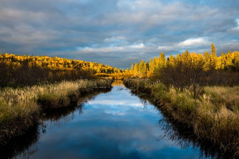 与云彩反射的狭窄的小河 免版税库存照片