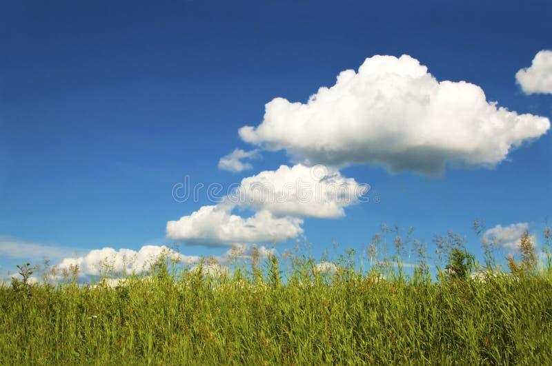 与云彩的夏天天气。 图库摄影