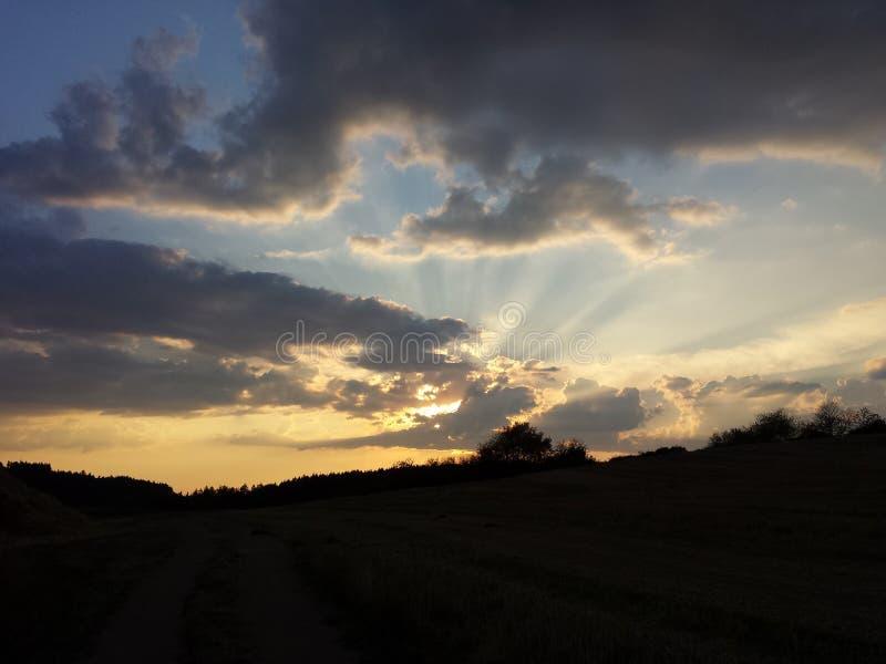与云彩的日落在森林 库存照片