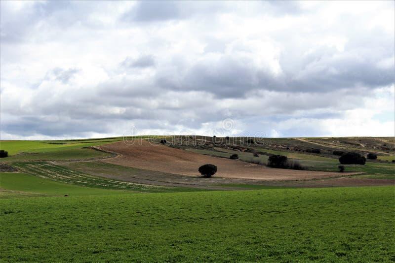 与云彩的绿色和棕色平安的风景 免版税库存照片