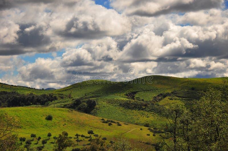 绿色峡谷小山 免版税库存图片