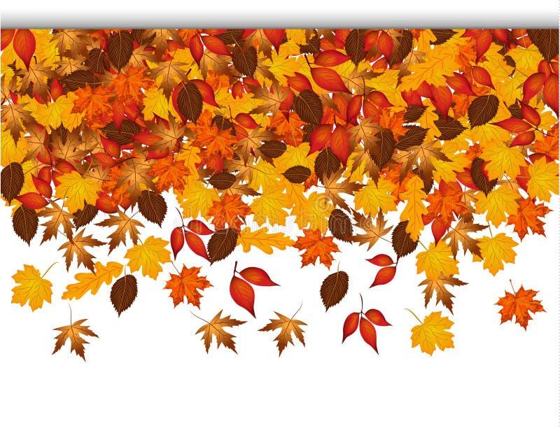 与五颜六色叶子落的秋天背景 库存图片