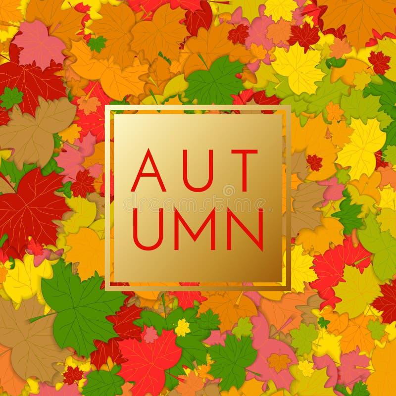 与五颜六色的叶子的秋天背景 秋天与秋叶的seasonals海报 摘要五颜六色的落的叶子 皇族释放例证