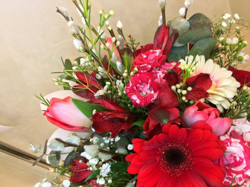 与五颜六色的构成 花桃红色郁金香、白色大丁草、麦、英国兰开斯特家族族徽、红色德国锥脚形酒杯、浪花玫瑰和柔荑花猫 图库摄影