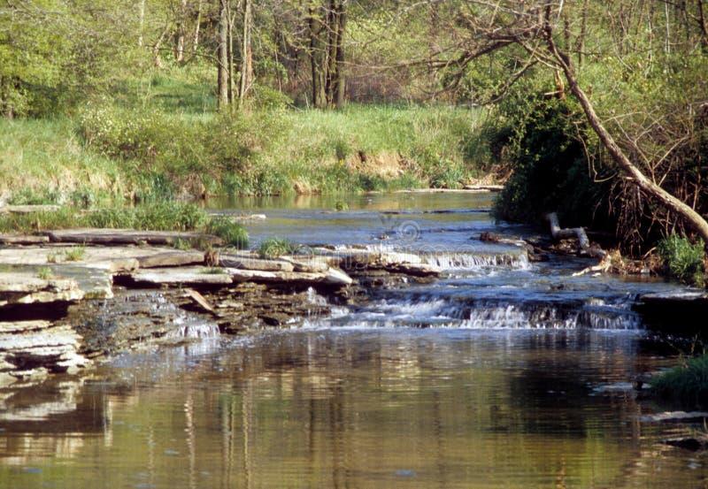 与五颜六色的树和小小河的中西部的秋天场面 免版税库存图片