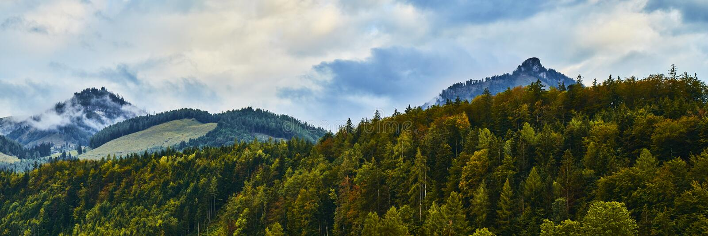 与五颜六色的森林、高山山和剧烈的天空的美好的全景风景在Wolfgangsee湖附近在奥地利 免版税库存照片