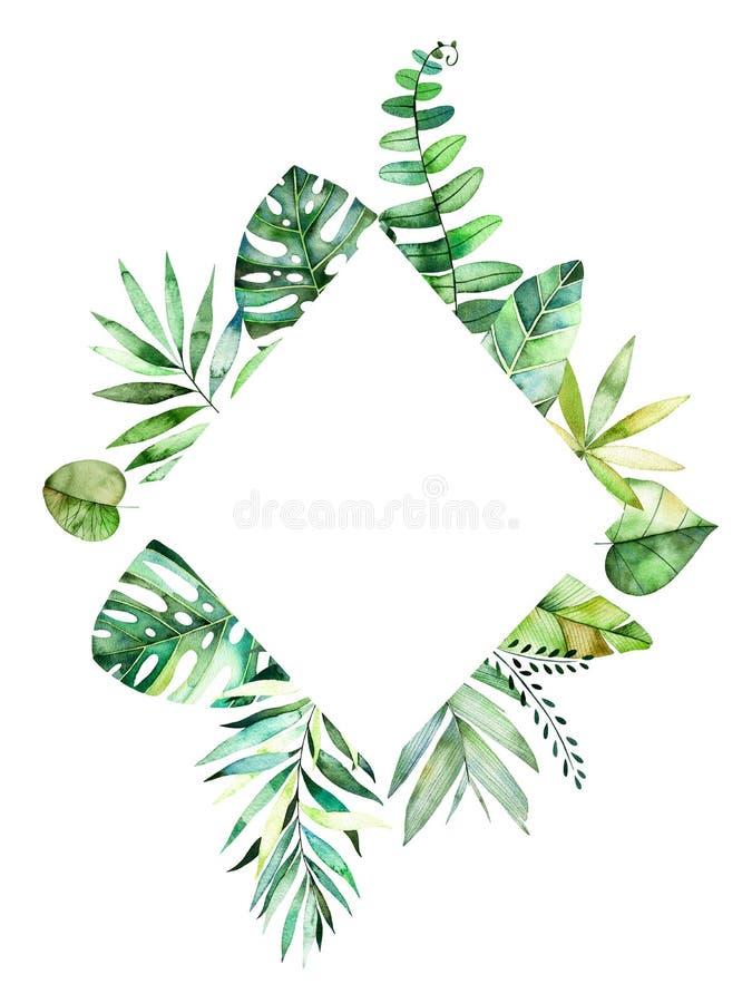 与五颜六色的热带叶子的五颜六色的花卉菱形框架 向量例证