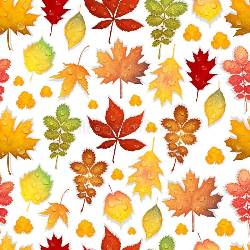 与五颜六色的秋叶的无缝的样式导航背景 皇族释放例证