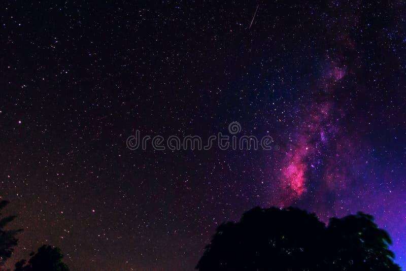 与五颜六色的银河的夜风景 免版税库存图片