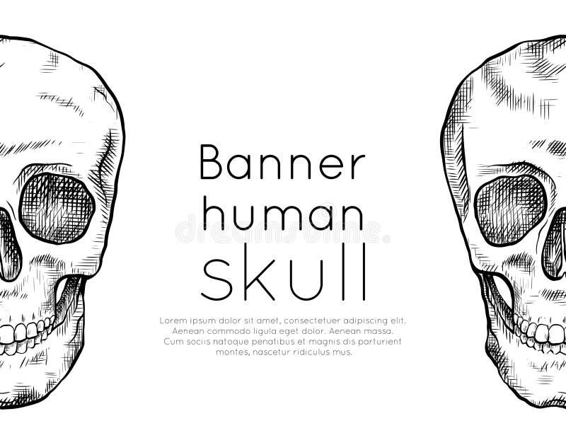 与人的文本的头骨和地方图画的水平的横幅有孵化的 o 等高艺术 黑白板刻 皇族释放例证