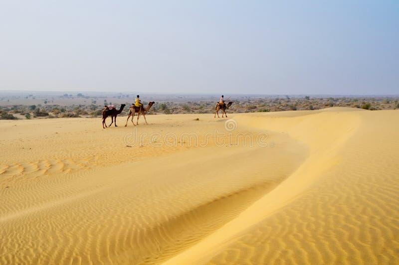 与人的骆驼沙丘的 图库摄影