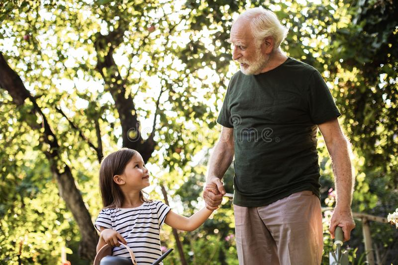 与他的孙女的Crandfather在美丽的晴朗的庭院里 免版税库存图片