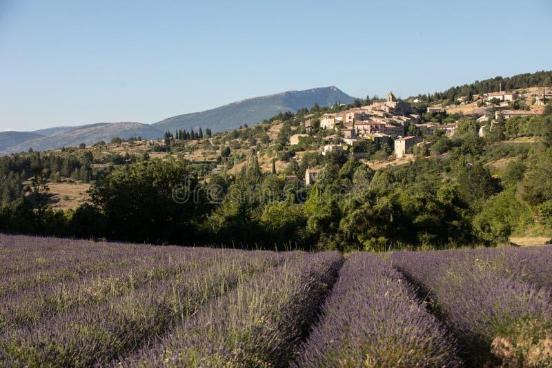 与以远Aurel村庄的淡紫色领域,横谷,普罗旺斯 免版税库存照片