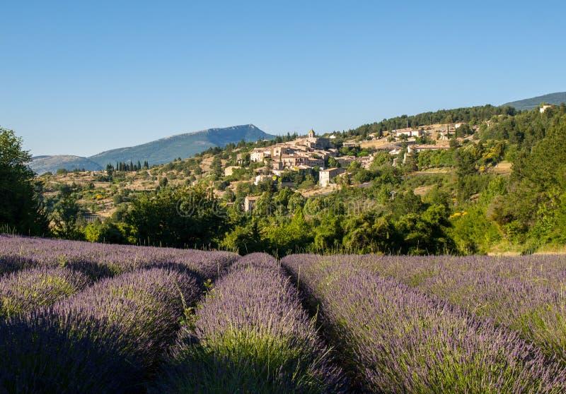与以远Aurel村庄的淡紫色领域,横谷,普罗旺斯 免版税库存图片