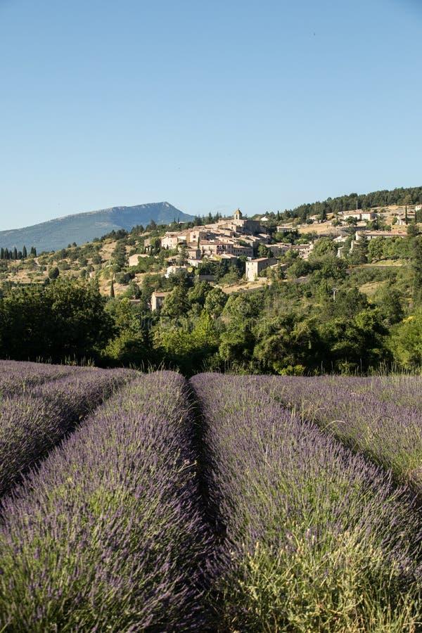 与以远Aurel村庄的淡紫色领域,横谷,普罗旺斯 库存照片