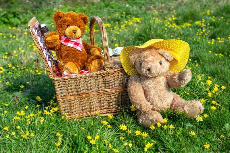 与传统柳条筐和两头熊的玩具熊的野餐在夏天草甸 免版税库存照片