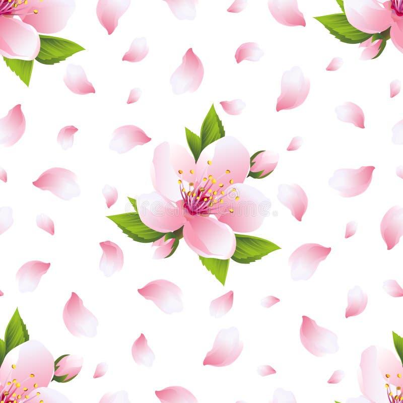 与佐仓开花和瓣的背景无缝的样式 库存例证
