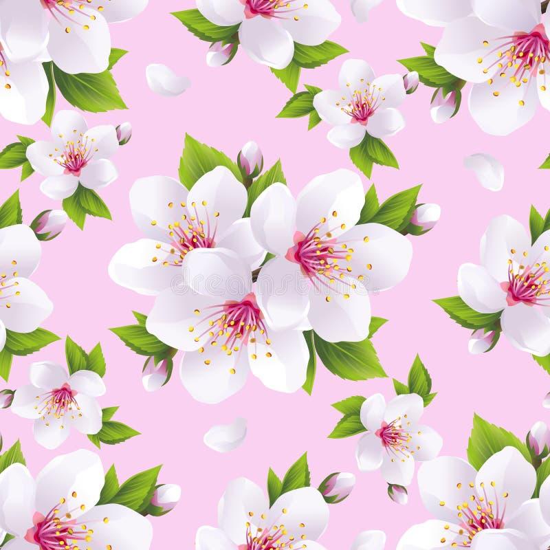 与佐仓开花的美好的无缝的样式桃红色 库存例证