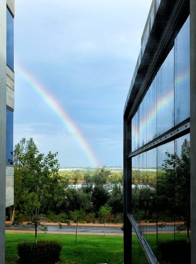 与便餐的彩虹在办公室窗口里 库存照片