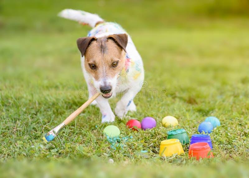 与做DIY复活节彩蛋的油漆刷的滑稽的狗在草 免版税库存照片