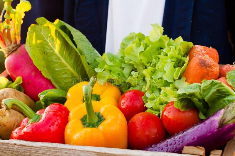 与健康吃的医疗保健,多彩多姿在木条板箱的新鲜蔬菜 免版税库存照片