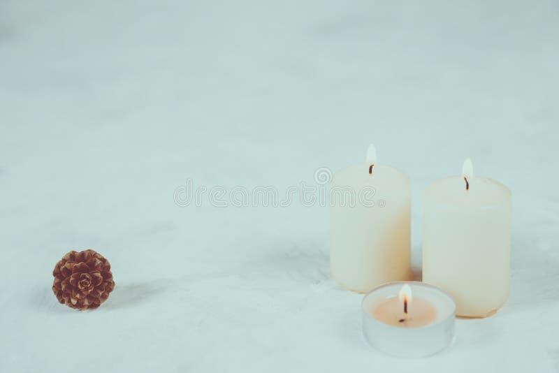 与光和杉木锥体的白色蜡烛在白色 免版税库存图片