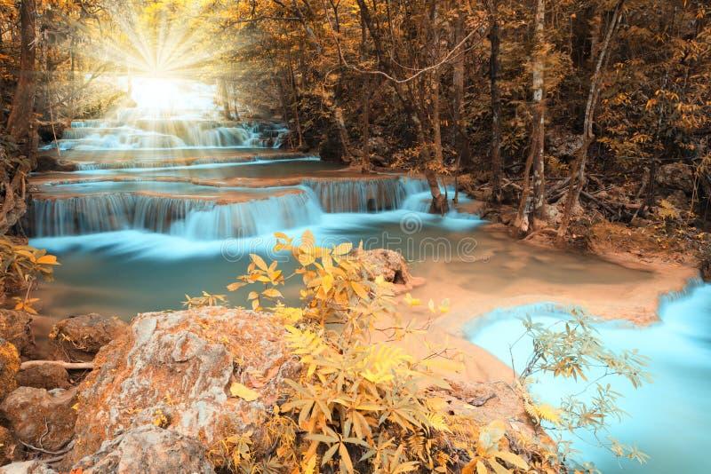 与光束的秋天深森林瀑布 库存图片