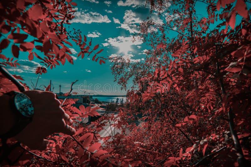 与光滑的云彩的惊人的湖视图 库存照片