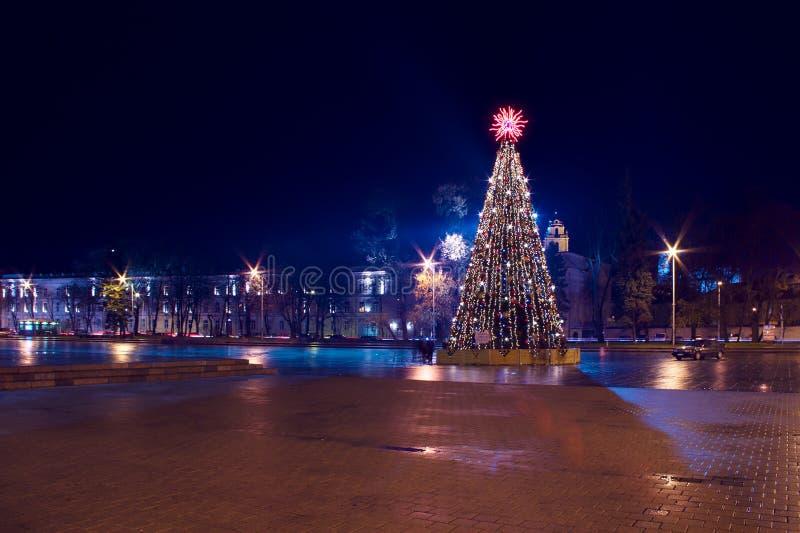 与光的圣诞树在维尔纽斯立陶宛 库存图片