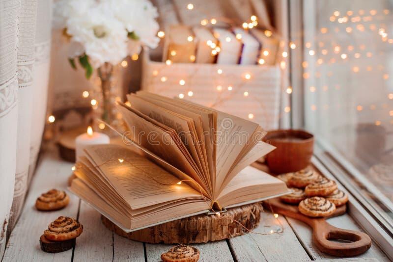与光的开放书 免版税库存照片