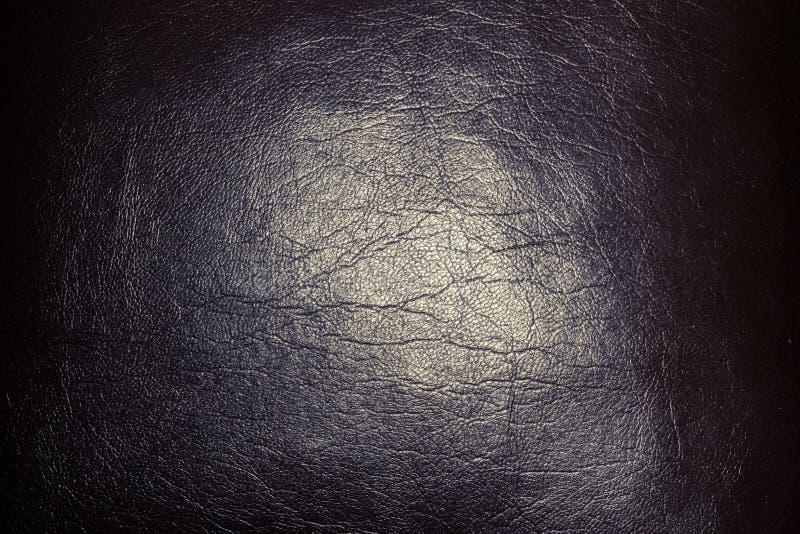 与光的深灰皮肤在中部 图库摄影