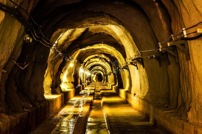 与光的黑暗的隧道 免版税库存照片